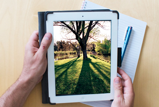 Get a 360 degree virtual tour of the ANU campus