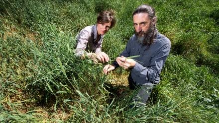 Associate Professor Driscoll and Dr Jane Catford in grass field