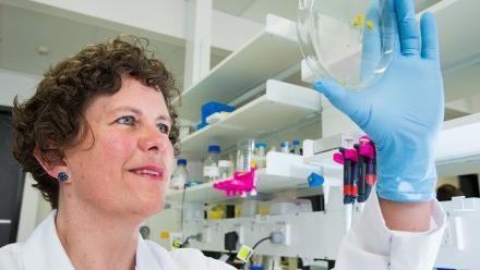 Dr Anneke Blackburn. Image: Stuart Hay, ANU