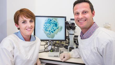 PhD student Tiffany Russell and Associate Professor David Tscharke examining cells infected with herpes virus.