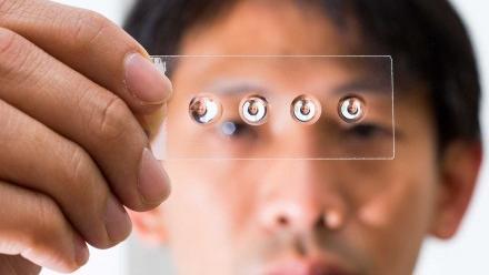 Photo of lenses on slide.