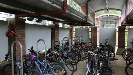 Bike sheds at Fenner Hall