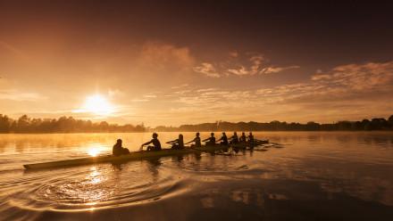 Elite athletes rowing