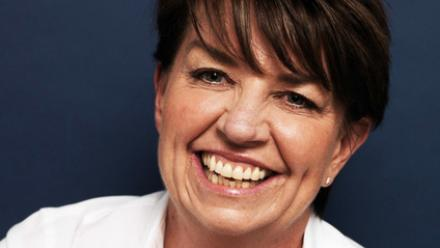 Front cover of Through the Wall by Anna Bligh