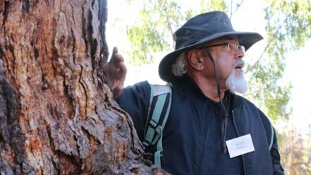 Ngunnawal Elder Wally Bell next to tree