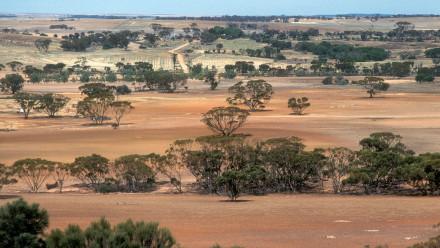 CSIRO_ScienceImage_4462_Landscape