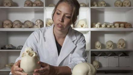 Dr Clare McFadden examining skeletal specimens
