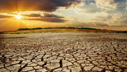 Image of dry landscape at sunset