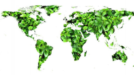 Globe leaves image by Gerd Altmann from Pixabay