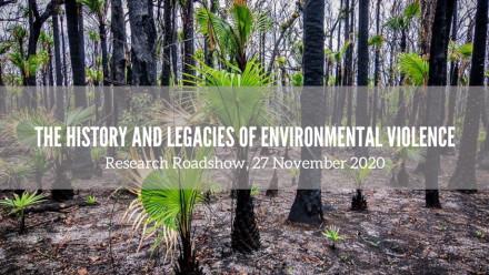 Regenerating forest