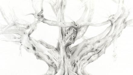 Image: Elizabeth Cross, Monumental Moreton Bay Fig, Botanical Gardens, Sydney, 2009-10, pencil on paper, 66 x 75.5 cm. Collection of the artist.