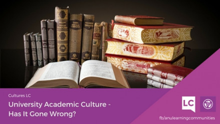 University Academic Culture: Has It Gone Wrong?