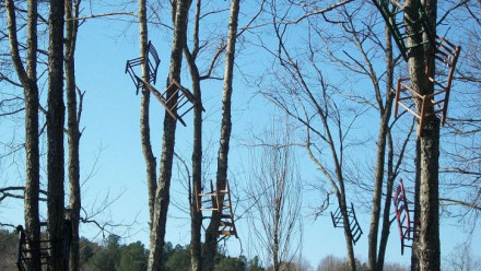 Image: Tom Shields, installation, 'Chairs find a place in the trees', North Carolina.
