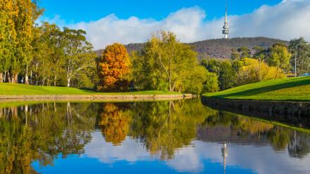 Creek reflection at ANU Campus