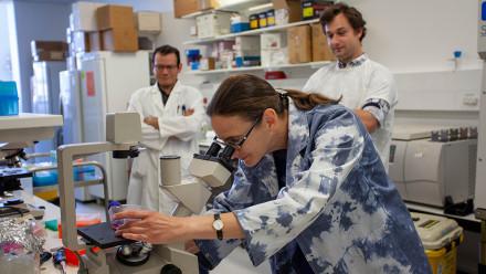 Associate Professor Aude Fahrer (centre) and her research team at the Linnaeus Building Lab