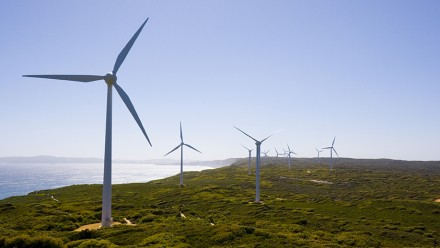 A wind farm at Albany, Western Australia. Image by Lawrence Murray on flickr.