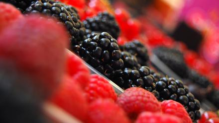 Berries. Image by jayneandd on flickr.