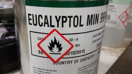 Eucalyptol is a flammable terpene. By Carsten Kulheim.