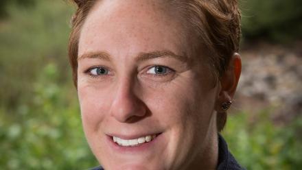 Dr Jill Sheppard