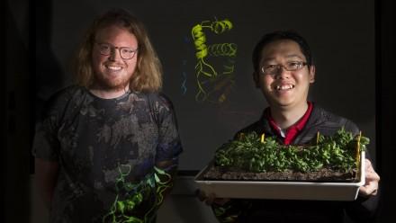 Dr Peter Mabbitt and Dr Kai Xun Chan. Image: Stuart Hay, ANU.