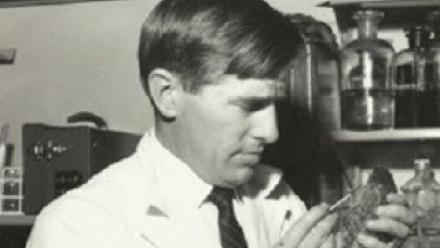 Dr Richard Barwick