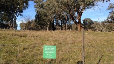 A property conserving box gums as part of the program. Author provided.