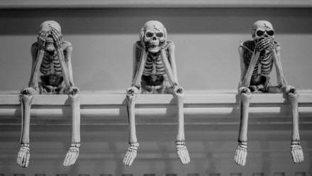 Three human skeletons. Photo by Danielle MacInnes on Unsplash