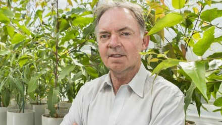 Professor Graham Farquhar