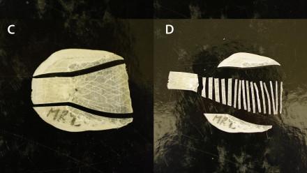 Lungfish scales. Image: Fallon SJ, McDougall AJ, Espinoza T, Roberts DT, Brooks S, Kind PK, et al. (2019) Age structure of the Australian lungfish (Neoceratodus forsteri).