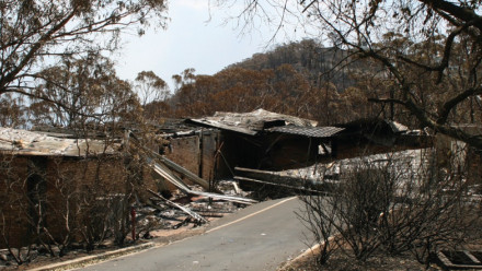Damage caused by the wildfires