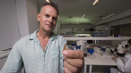 Associate Professor Geoffrey Clark. Image: Jack Fox, ANU