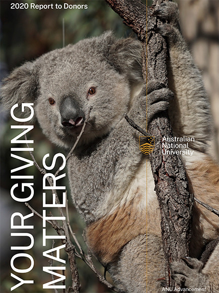 2020 Report to Donors cover image - Koala holding onto a tree branch