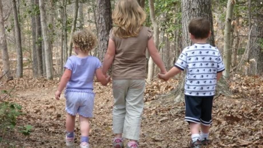 Photo of three children walking through the forest