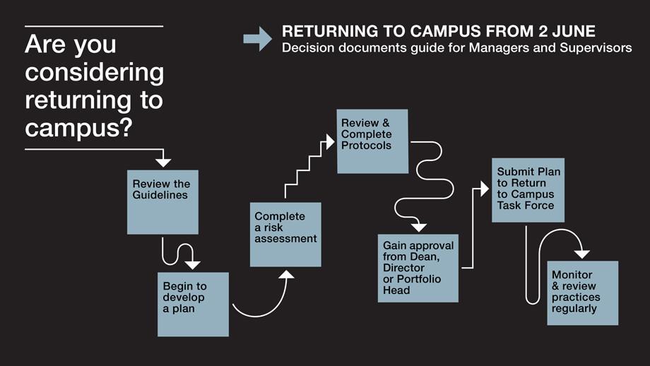 Returning to campus decision flowchart