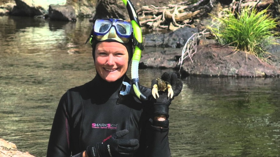 Murray crayfish high country hideout under threat
