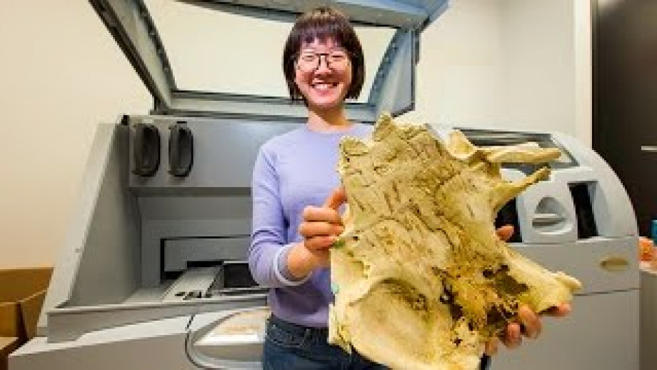 3D printed fish fossil may reveal origin of human teeth
