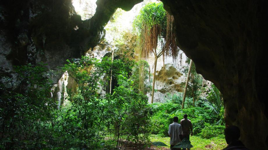 Inside the Panga ya Saidi cave that dates back 78,000 years. Image: Dr Ceri Shipton.