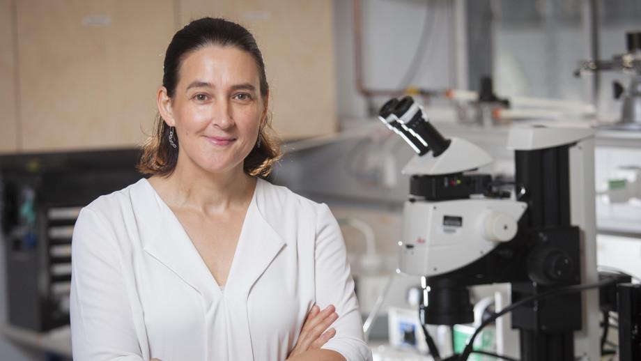 Professor Jodie Bradby, ANU Research School of Physics & Engineering. Image: Jack Fox, ANU