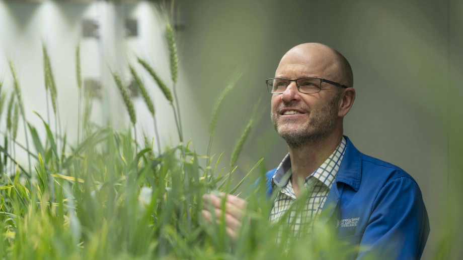 Professor Barry Pogson from the Research School of Biology. Image credit: Lannon Harley, ANU
