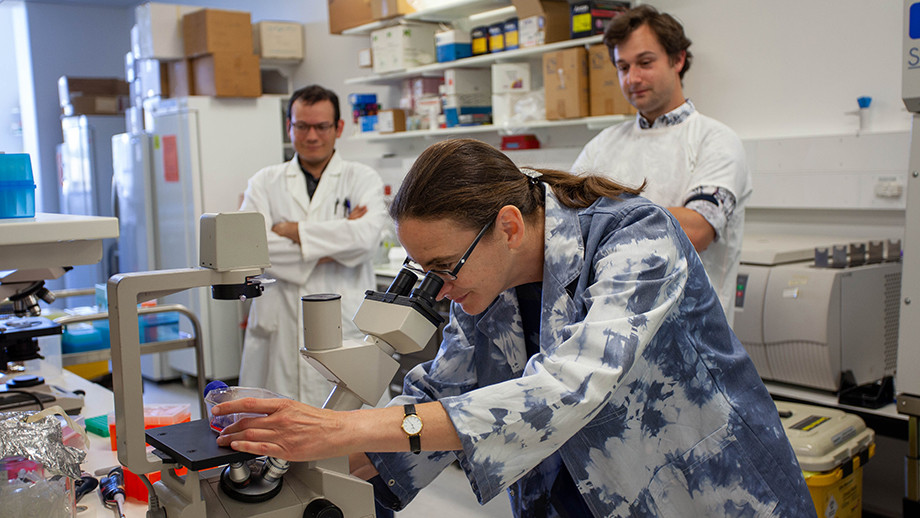 Associate Professor Aude Fahrer (centre) and her research team at the Linnaeus Building Lab