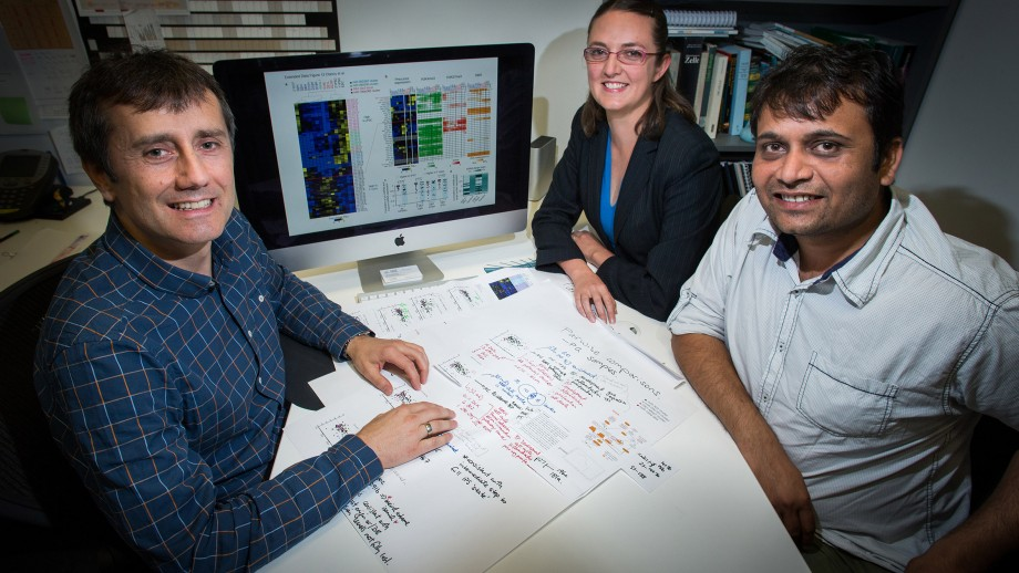 Professor Thomas Preiss discusses gene networks during stem cell reprogramming  with his JCSMR colleagues Dr Jen Clancy and Dr Hardip Patel. Image: Stuart Hay.