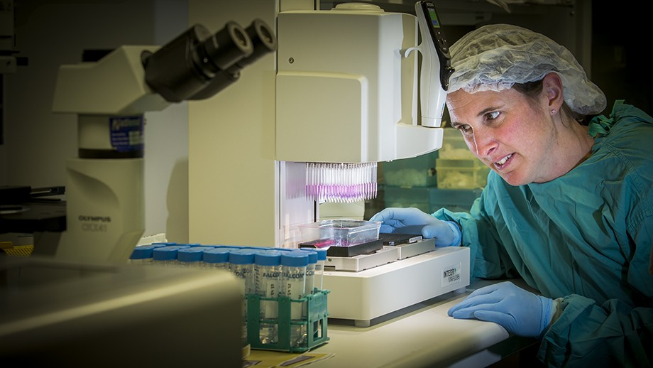 Co-author Linda Fitzgerald works on the automated XX at the Australian Phenomics Centre. Image Stuart Hay, ANU