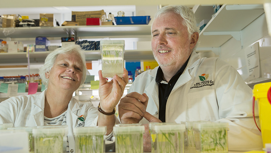 Professor Susanne Von Caemmerer and Professor Dean Price. Photo by Stuart Hay, ANU.