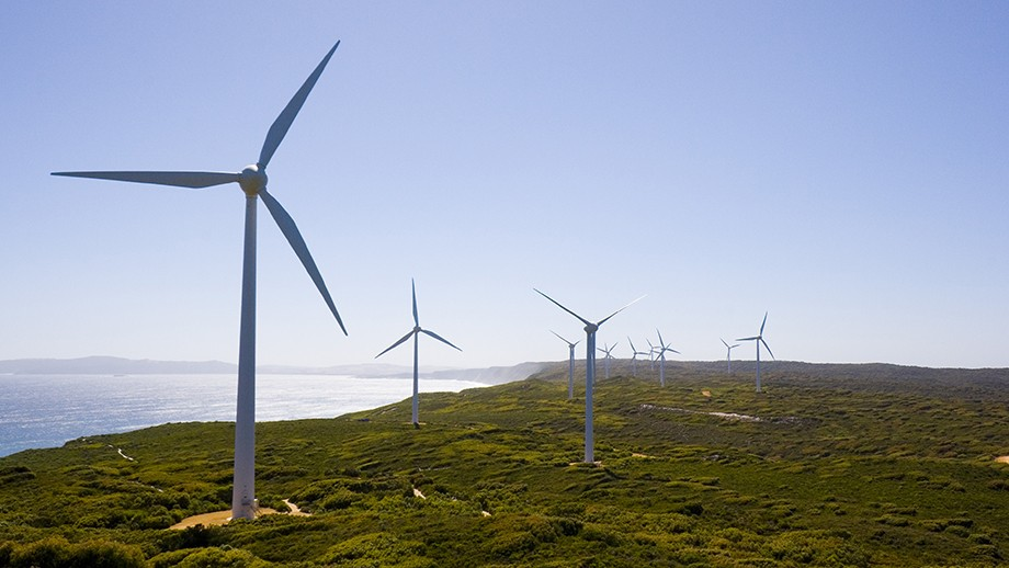 Albany wind farm. Image courtesy Lawrence Murray on flickr.