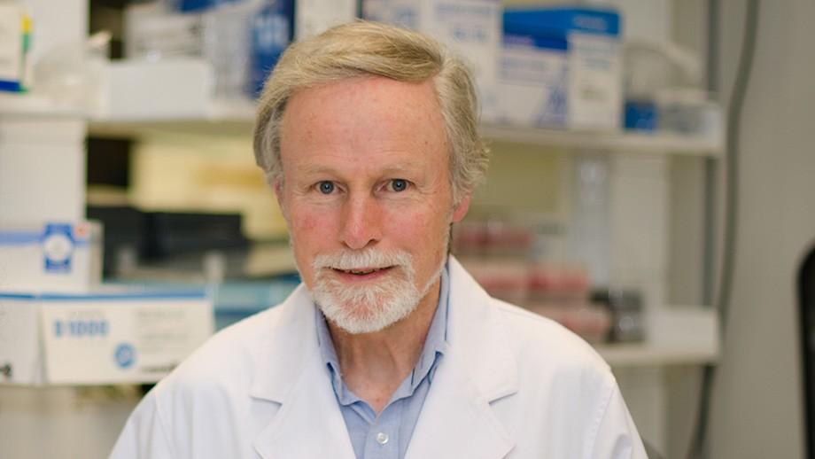 Professor Chris Parish. Image: Stuart Hay.