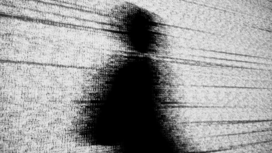 Dr Adam Henschke says a single online ID would be dangerous. Image Flickr
