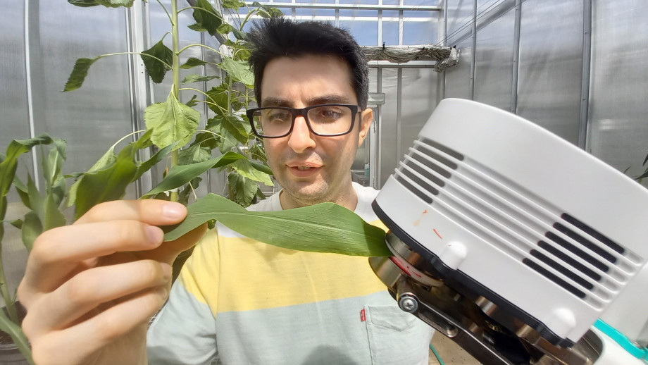 ANU researcher Diego Márquez with a maize plant and a device scientists use to measure dehydration levels. Credit: ANU