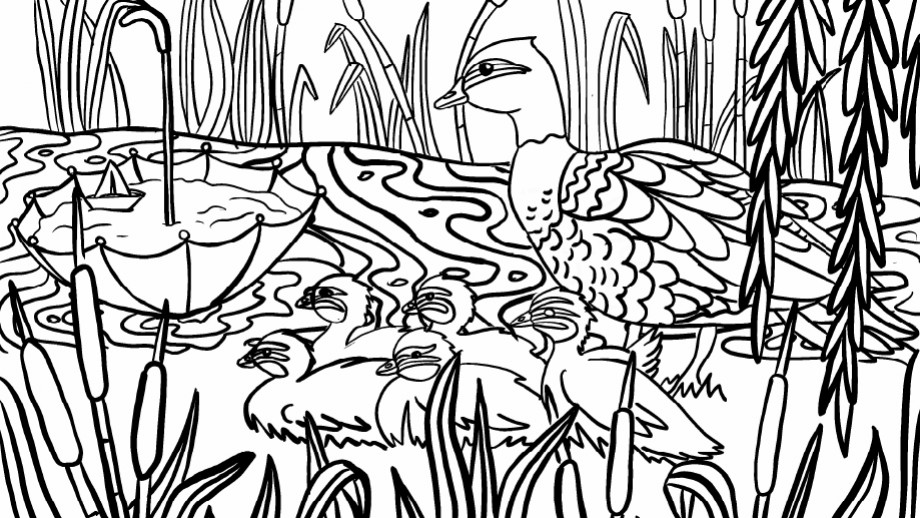 Family of Ducks - colouring in sheet