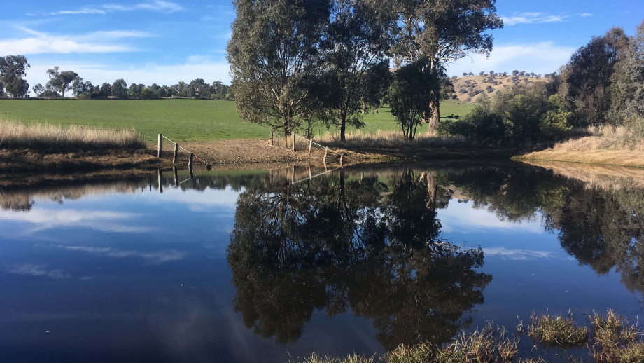 The ANU has received $5.93 million in funding to measure the benefits of farm dams. Image: Sustainable Farms ANU