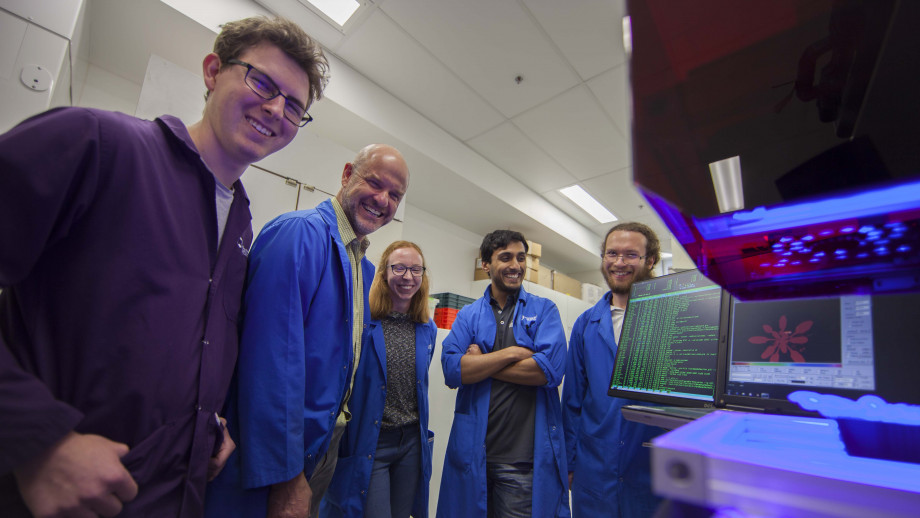 The research team, with Professor Barry Pogson second from the left. Image: Jack Fox, ANU